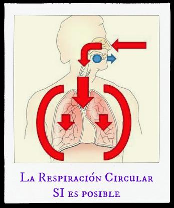 resp. circular