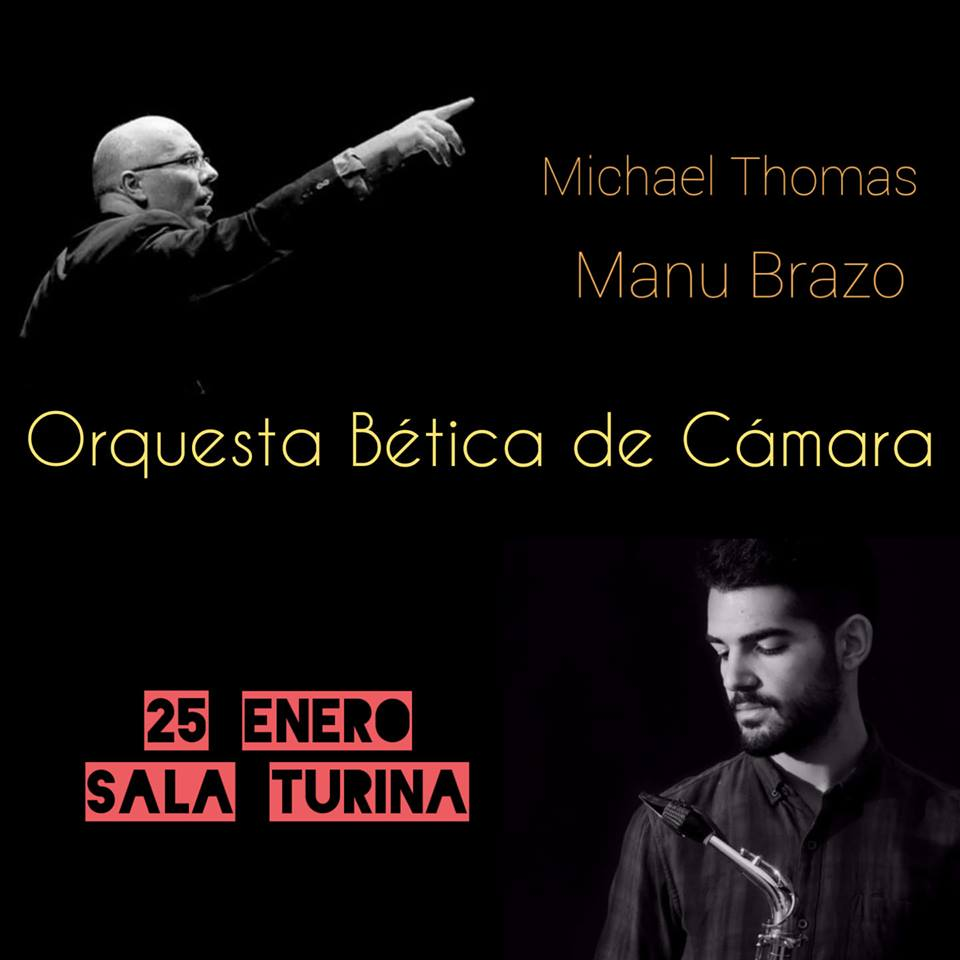Enero 2019 Orquesta Betica de camara manu brazo